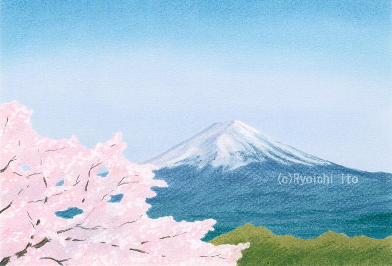 河口湖からの富士山と桜《色鉛筆》 (22cm×15cm)