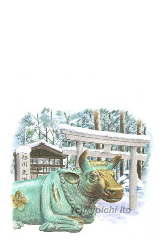 北海道・旭川天満宮の撫で牛《色鉛筆》(22cm×15cm)「あっという間にかんたん 和年賀状2021年版(技術評論社)のためのイラスト