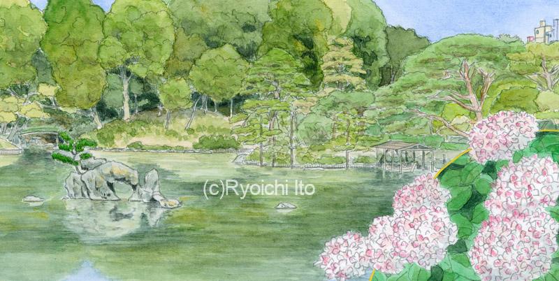 第2392回東京都宝くじ《透明水彩》(28.2cm×14.2cm) 六義園とあじさいの紅まりを描きました。