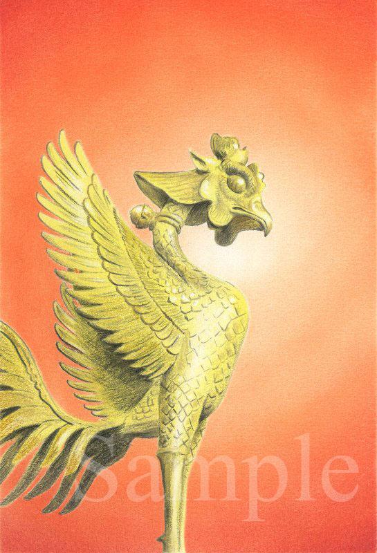 黄金の鳳凰《色鉛筆》 (22cm×15cm)