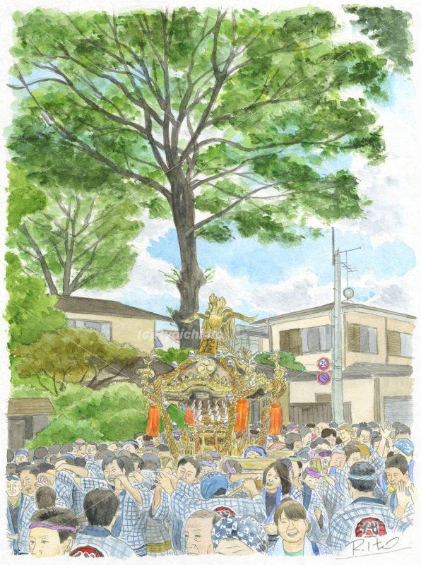 オリジナル「北澤八幡神社・御神輿」